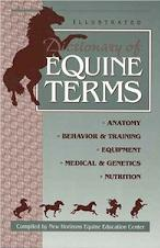 Equine Terms book cover