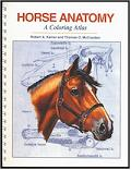 Horse Anatomy book cover