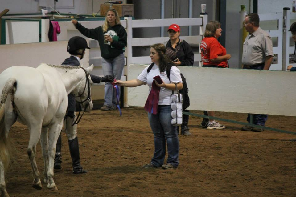 4 h horse judging manual