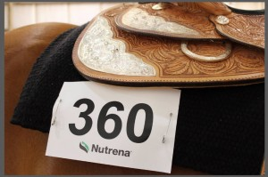 state show back number