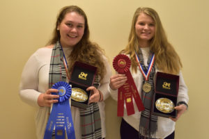 Cover photo for 2018 NC State 4-H Hippology Contest Results