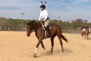 Kristen Kaus riding a horse