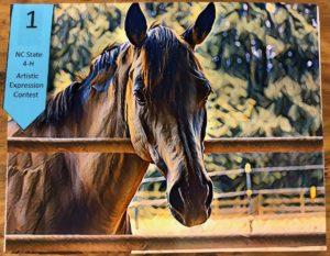 enhanced photo of horse resting head on gate rail