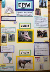 poster about equine protozoal miloencephalitis