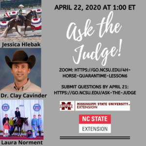 Ask the Judge flyer