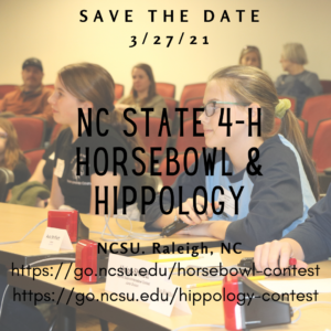 Cover photo for December 2020 NC 4-H Horse Program Newsletter