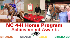 Cover photo for January 2021 NC 4-H Horse Program Newsletter