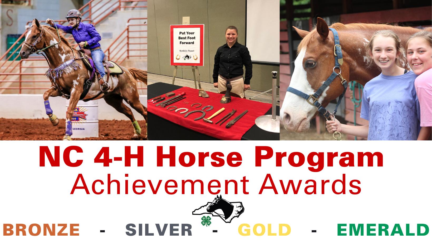 Achievement Awards banner