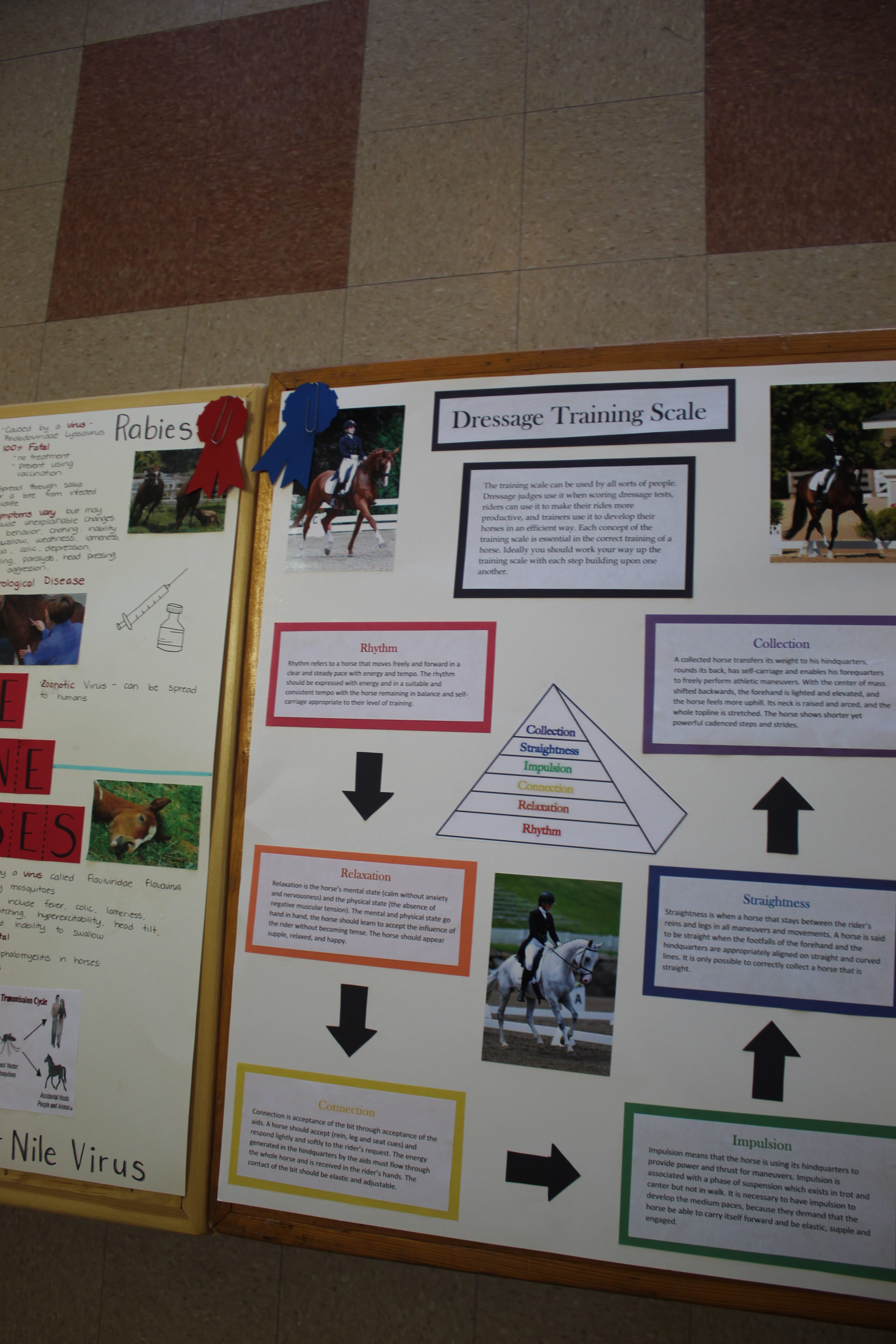 Photo of a poster project