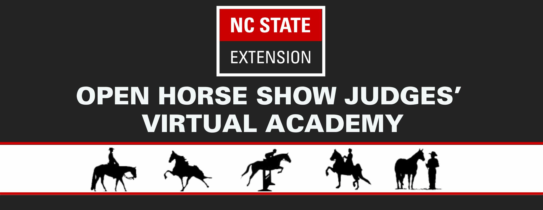 Open Horse Show Judges' Virtual Academy header image